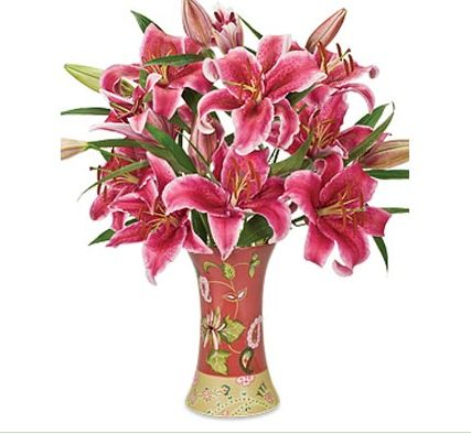 pink lilies put in a vase