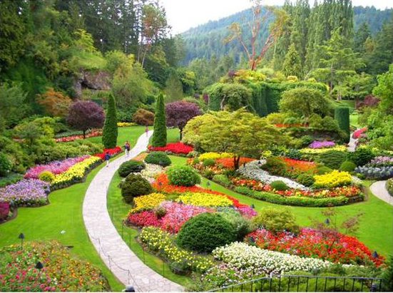 Charmant Flower Gardens Arranged Artistically, Are Known As Knot Gardens. Knot  Gardens Are Designed By A Systematic Composition Of Plants, Herbs And  Shrubs.