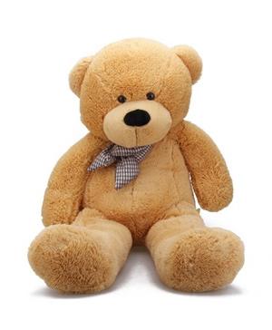 Teddy Bear B