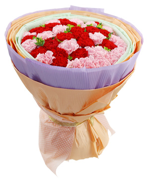 20 pink carnations, 20 red carnations