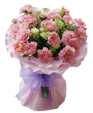19 Pink Carnations