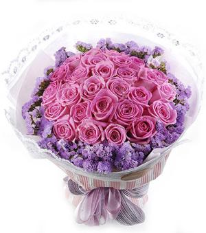 Phoenix - 24 purple roses