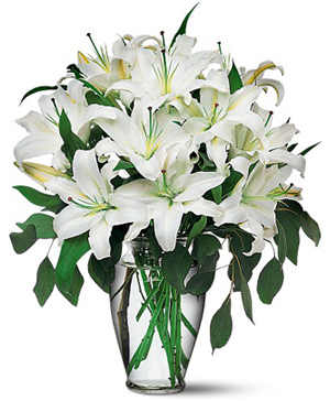12 white lilies with a vase