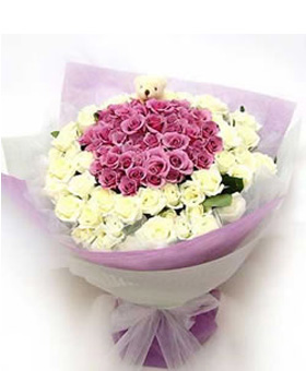 Only - 66 white roses, 33 purple roses