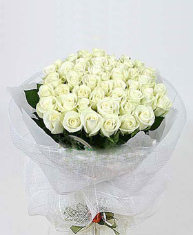 36 white roses - ChinaFlowers