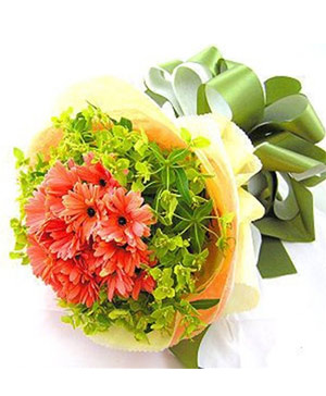 19 gerbera delivery in China